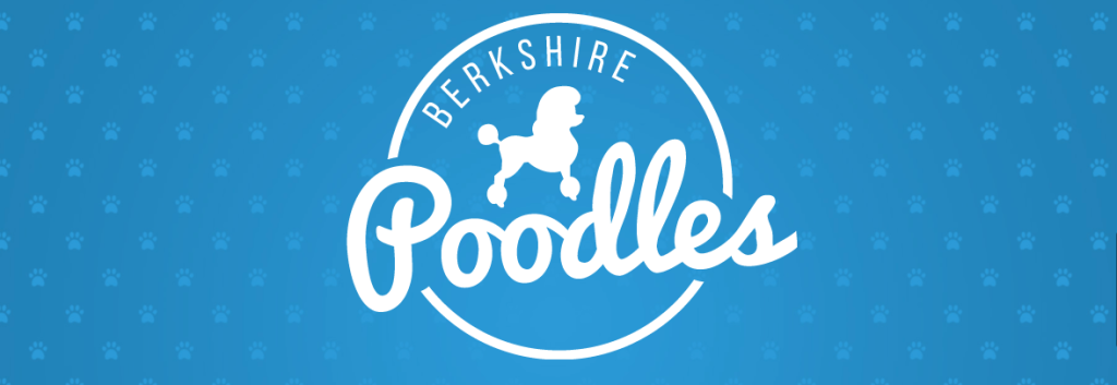 OneEighty logo for Berkshire Poodles